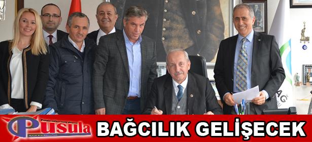 BA�CILIK GEL��ECEK
