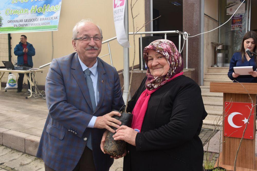 Tekirdağ Büyükşehir Belediyesi Ihlamurlara Can Veriyor